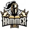 Hammer Labz